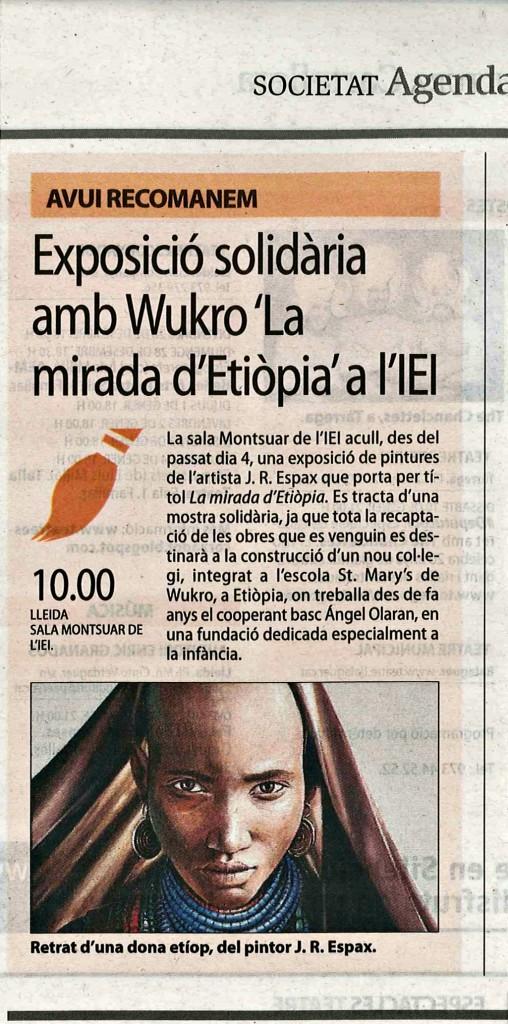 22-12-14 Diari Segre Exposició IEI Lleida millorada