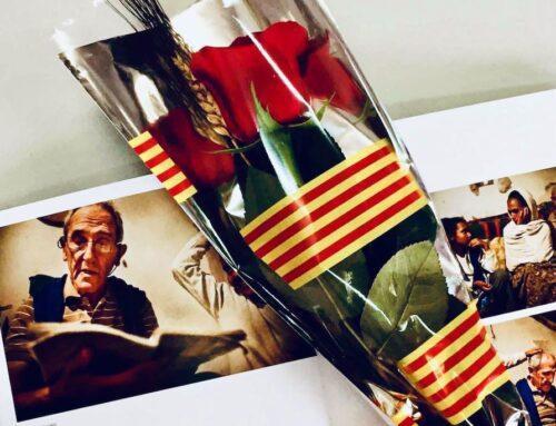 Rosa solidaria virtual con un escrito del Padre Ángel Olaran